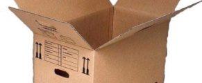 master-carton-box-500x500